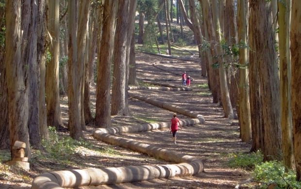 Presidio Trails 2011 Documentation