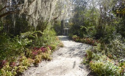 One of many paths in the gardens. Photo by T.