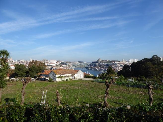 grahams-winery